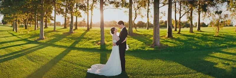 Свадьба панорама фото