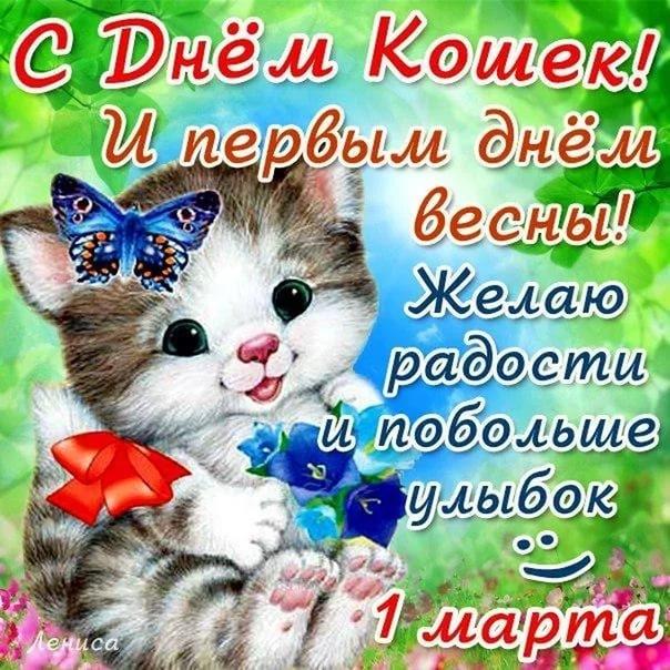 День кошки открытки с