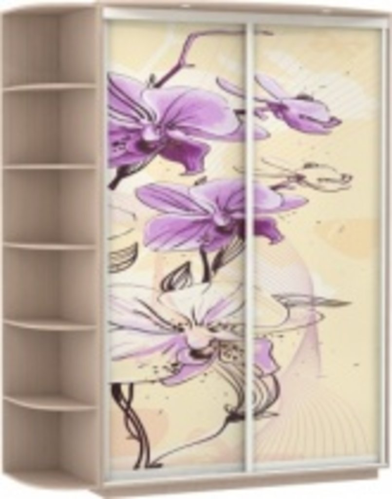 Шкаф-купе Цветы - корпусные Галерея по мебели на заказ и 35