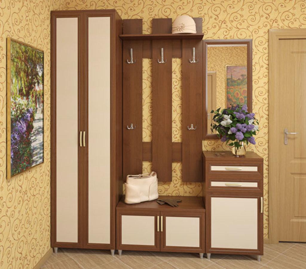 Набор мебели для прихожей pr1 ооо февраль-м.