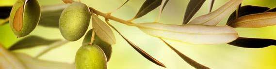 кухонный фартук олива
