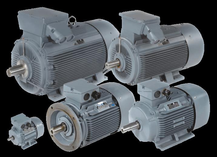 Двигатель электрический Череповец
