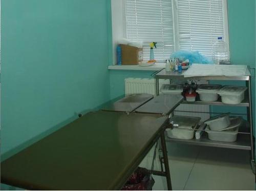 хирургия животных в туле