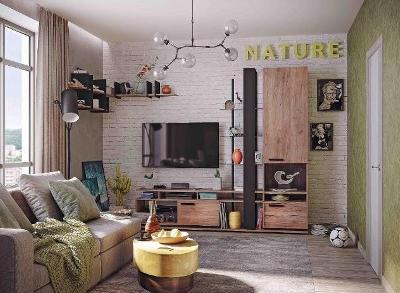 Модульная мебель в гостиную Nature