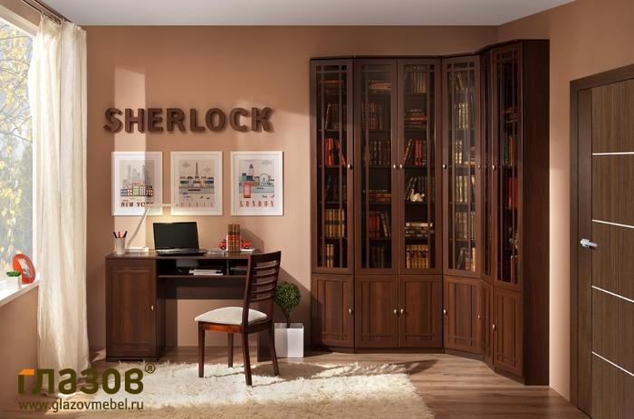 Модульная библиотека SHERLOCK (Орех шоколадный, Ясень Анкор темн.)