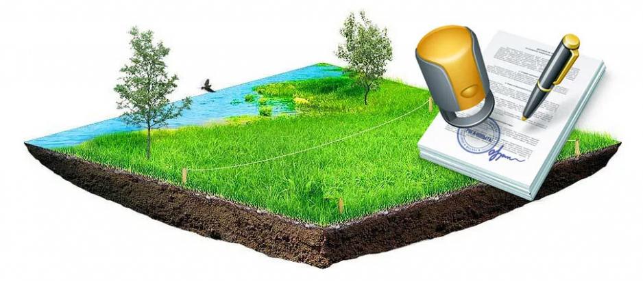 земельный раздел