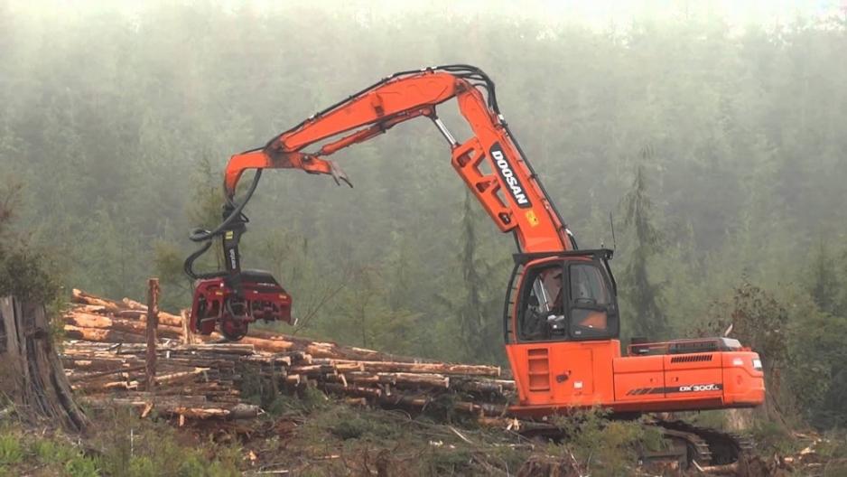 Перегружатель леса Doosan