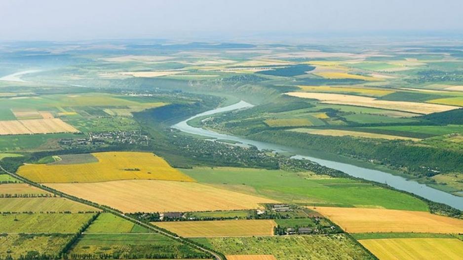 проект Вологодский гектар