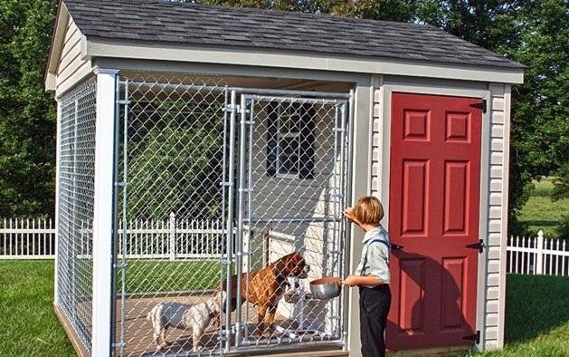 уличный вольер для содержания собак
