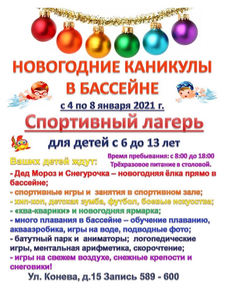 лагерь в новогодние каникулы